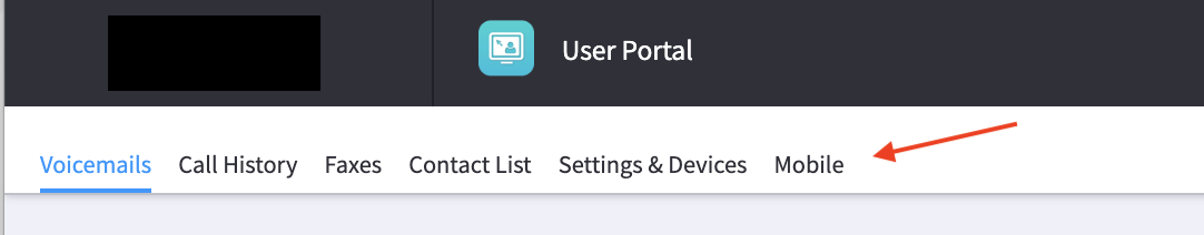 CallThru User Portal Mobile tab.png