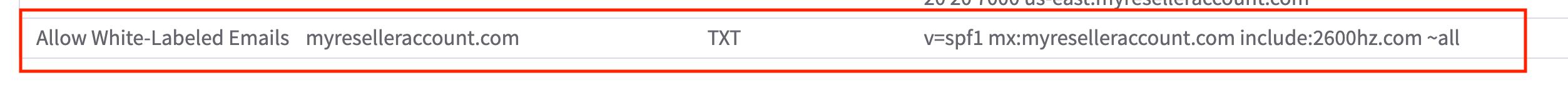 DNS Branding TXT.png